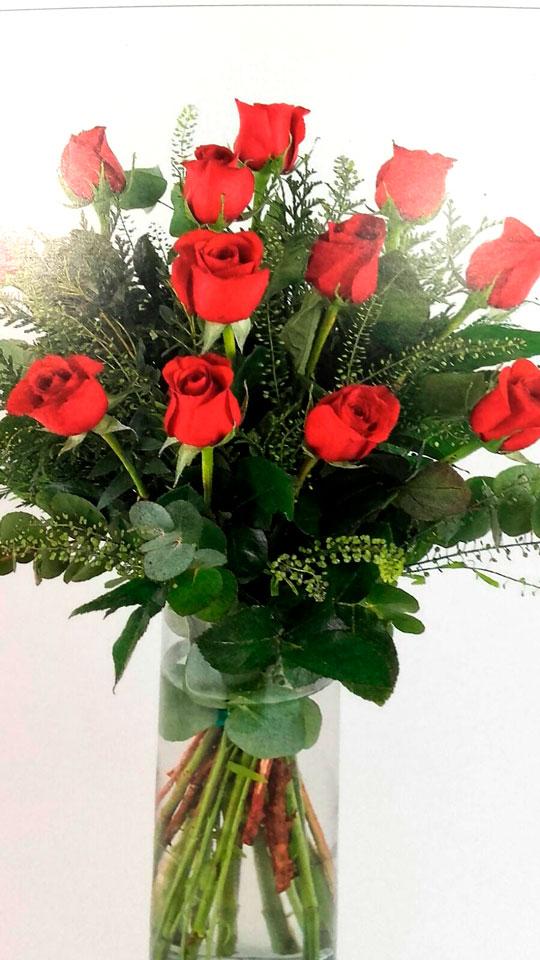 docena-rosas