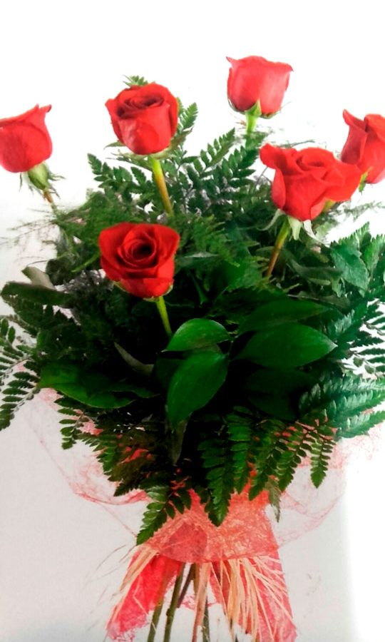sexta-rosas